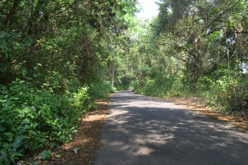 road to aguada jail, goa