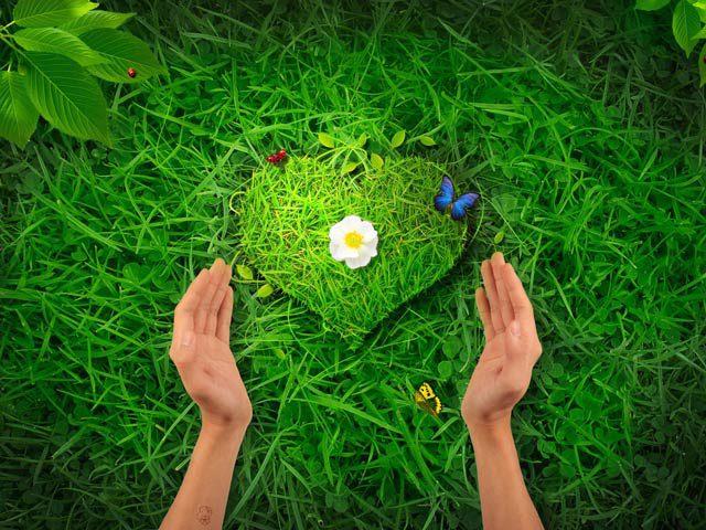 Creating A BlissfulLife