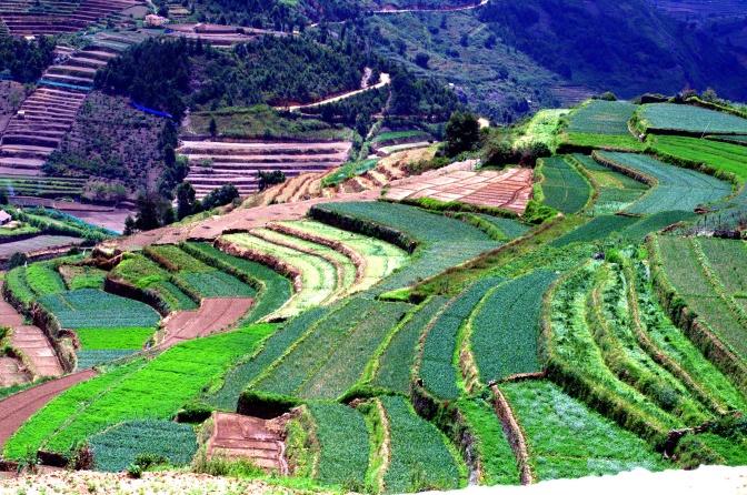 Karuna Farms – a heaven on Earth
